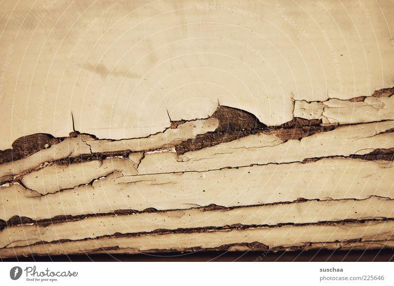 ausmisten II Verfall Vergänglichkeit Detailaufnahme Riss Lack verfallen Fensterrahmen Gedeckte Farben Nahaufnahme Makroaufnahme Strukturen & Formen Menschenleer