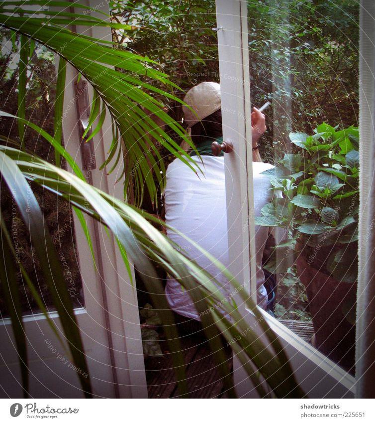 Pause Mensch Mann Pflanze Blatt ruhig Erwachsene Erholung Fenster Zufriedenheit Rauchen 18-30 Jahre Balkon Scheibe Junger Mann Topfpflanze Palmenwedel