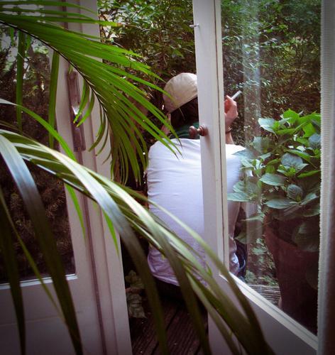 Pause Zufriedenheit Erholung ruhig Mensch Mann Erwachsene 1 Rauchen Farbfoto Tag Rückansicht Pflanze Balkon Topfpflanze Blatt Palmenwedel Scheibe Fenster