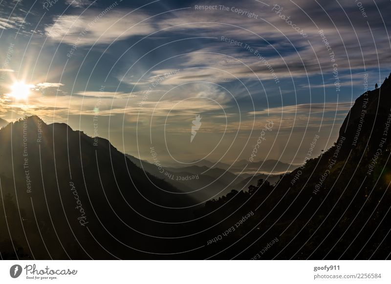 Guten morgen Sri Lanka Ferien & Urlaub & Reisen Tourismus Ausflug Abenteuer Ferne Freiheit Expedition Sommer Insel Berge u. Gebirge Umwelt Natur Landschaft