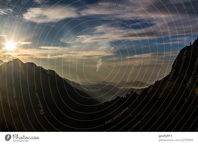 Guten morgen Sri Lanka Himmel Natur Ferien & Urlaub & Reisen Pflanze Sommer schön Landschaft Sonne Tier Wolken Ferne Berge u. Gebirge Umwelt Tourismus Freiheit