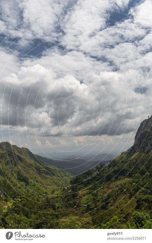 Ausblick...... Ferien & Urlaub & Reisen Tourismus Ausflug Abenteuer Ferne Freiheit Expedition Umwelt Natur Landschaft Himmel Wolken Gewitterwolken Wetter Baum