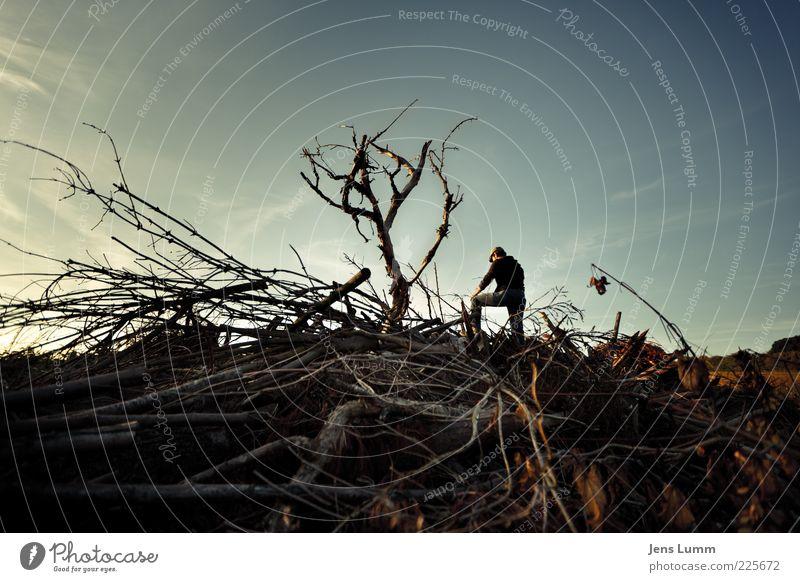 Retired Tree Hugger Mensch maskulin Mann Erwachsene 1 alt blau braun Ehrlichkeit träumen Traurigkeit Trauer Enttäuschung schuldig Scham Reue Holz Baum Baumstamm