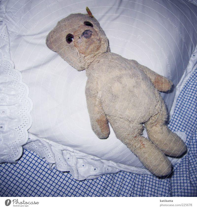 Schlaflos Bett Spielzeug Teddybär Stofftiere Sammlerstück alt liegen dreckig kuschlig niedlich positiv retro Sicherheit Geborgenheit Sehnsucht einzigartig