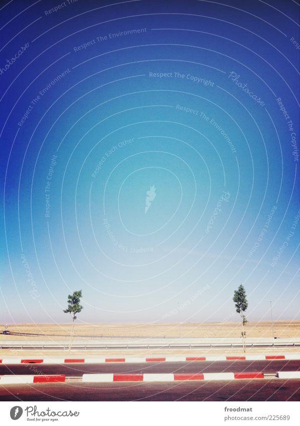 sad Himmel Baum blau Sommer Einsamkeit Straße Reisefotografie Wüste Unendlichkeit Schönes Wetter Fernweh Bordsteinkante himmelblau Straßenrand Vignettierung minimalistisch