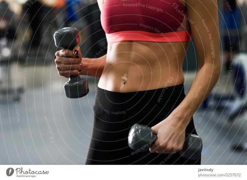 Junge Frau mit dem schönen Unterleib anhebende dumbells an der Turnhalle Lifestyle Körper Sport Mensch feminin Jugendliche Erwachsene Brust 1 18-30 Jahre