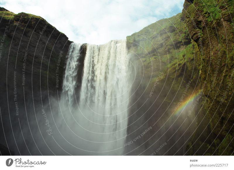 Skógafoss Natur Wasser grün Berge u. Gebirge Glück Felsen außergewöhnlich wild hoch nass Idylle Schönes Wetter Symbole & Metaphern Fluss Island Moos