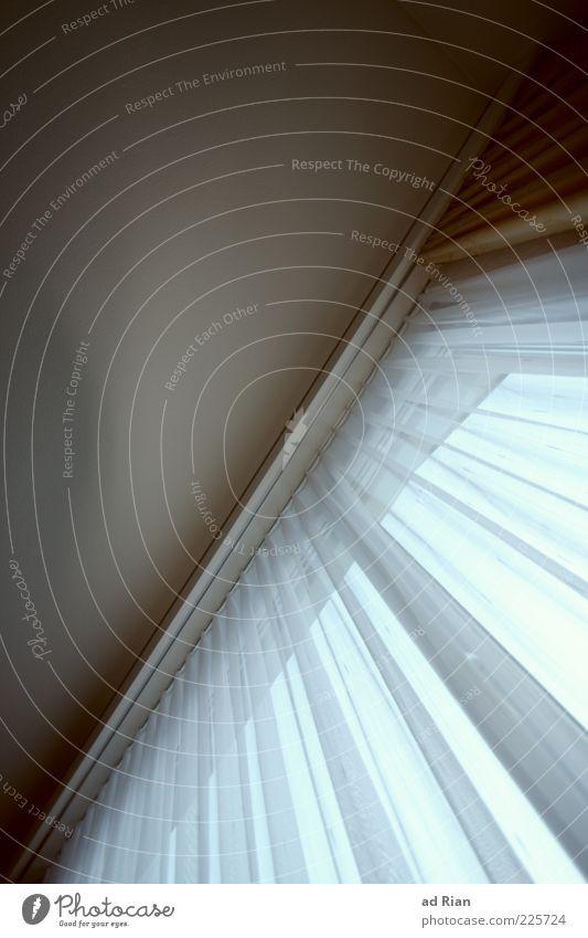 CouchAussicht Fenster Decke Stil Farbfoto Innenaufnahme Gardine Befestigung Froschperspektive weiß Menschenleer Tag