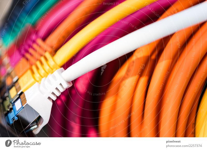 Bunte Netzwerkkabel weiß rot gelb sprechen rosa Büro Technik & Technologie Telekommunikation Computer Kabel Internet Informationstechnologie Computernetzwerk