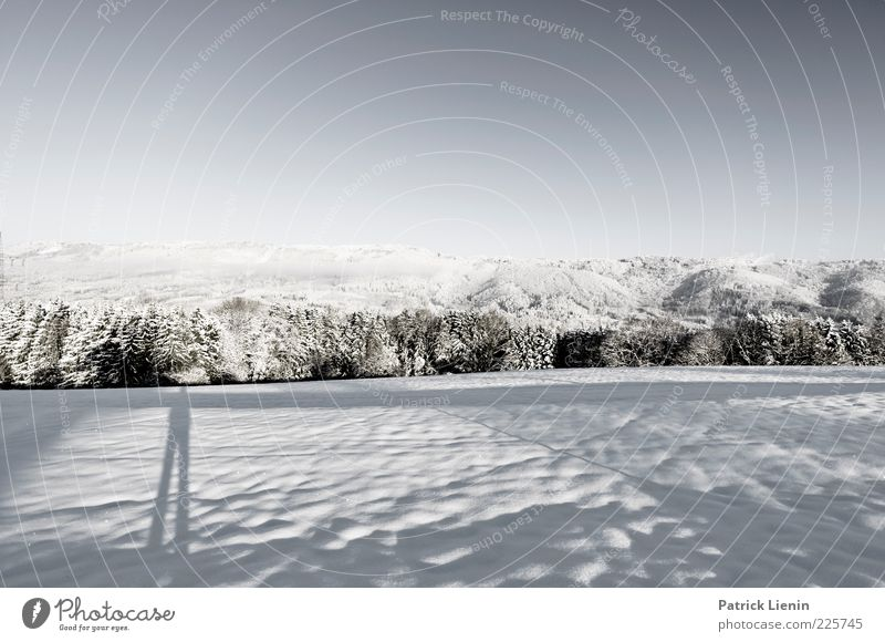 Take a look around Himmel Natur Baum Winter Ferne Wald Wiese Schnee Berge u. Gebirge Umwelt Landschaft Stimmung Luft Wetter Zufriedenheit Klima