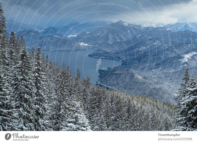 Die Kälte Abenteuer Winter Schnee Berge u. Gebirge wandern Natur Landschaft Wasser Gewitterwolken schlechtes Wetter Unwetter Wind Sturm Schneefall Alpen Gipfel
