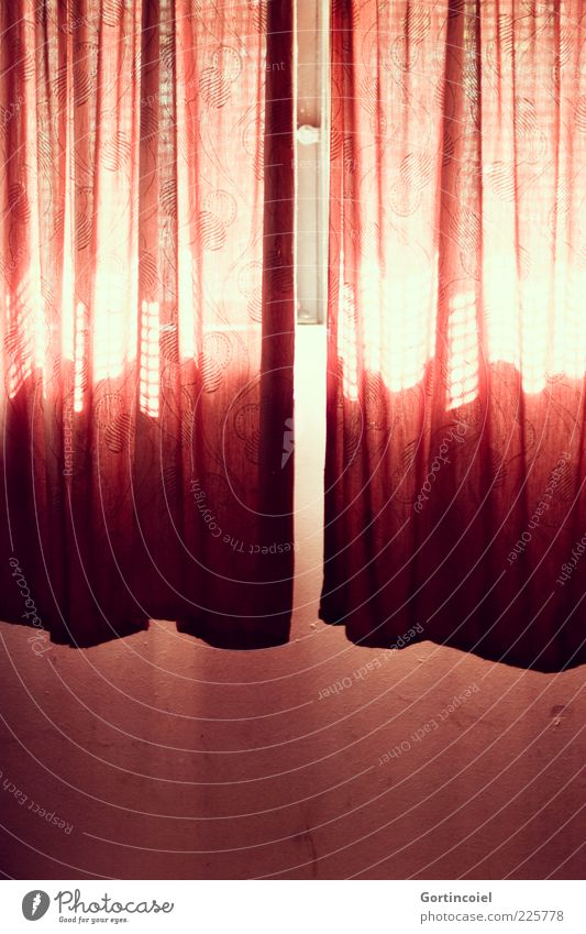 Hier kommt die Sonne Mauer Wand Fenster rot hell Vorhang Kellerfenster Lichtspiel Lichteinfall Farbfoto Innenaufnahme Muster Textfreiraum unten Tag Schatten