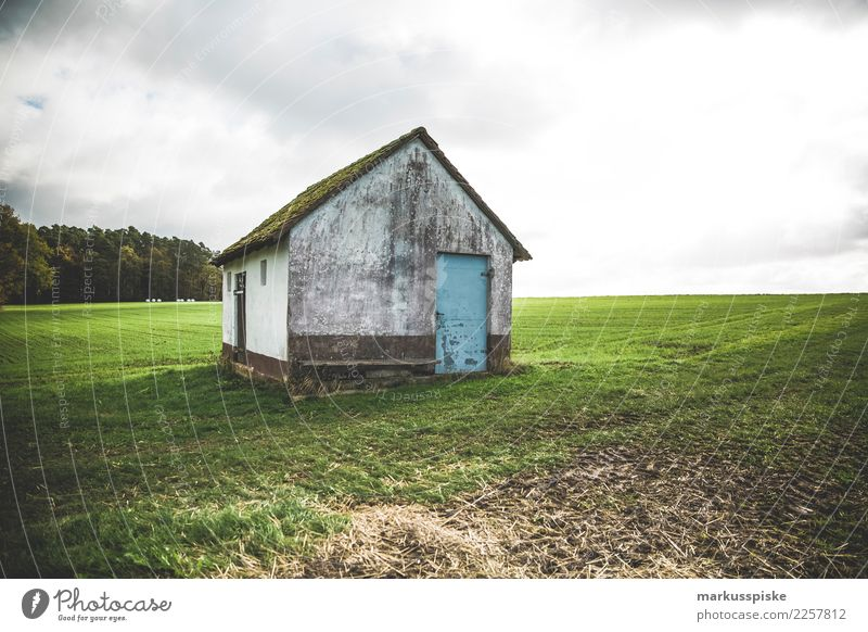 Scheune Pflanze Landschaft Tier dunkel Architektur Wand Wiese Gebäude Mauer Fassade Arbeit & Erwerbstätigkeit Feld Tür Vergänglichkeit Landwirtschaft Beruf