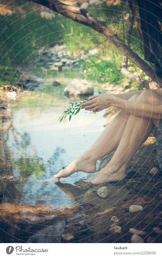 Natürliche Freude Gesundheitswesen Alternativmedizin Gesunde Ernährung Wellness Leben harmonisch Wohlgefühl Zufriedenheit Sinnesorgane Erholung ruhig Meditation