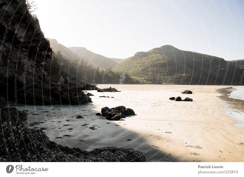 Collapse the Light into Earth Natur Wasser schön Pflanze Freude Sommer Strand Meer Wald Berge u. Gebirge Umwelt Landschaft Sand Küste Stimmung Luft