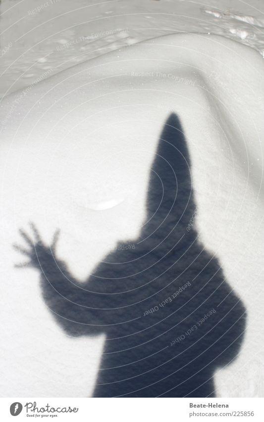 Die magischen Kräfte der Baba Jaga Natur Hand weiß Winter Leben Schnee Kopf grau träumen Angst Eis Kraft Finger bedrohlich Frost Macht
