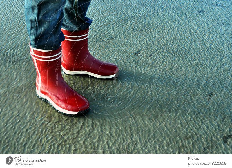 Watt is dat schön?! Mensch Beine Fuß 1 Umwelt Natur Erde Wasser Küste Seeufer Flussufer Strand Nordsee stehen Flüssigkeit nass blau rot Wattenmeer Wattwandern
