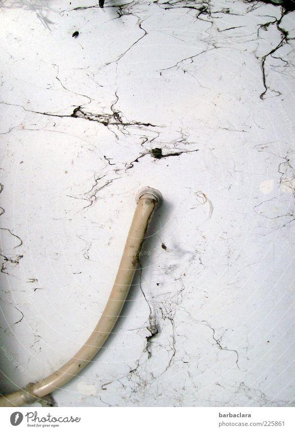 Spinnweben-Design alt Wand grau dreckig Kabel Spinngewebe