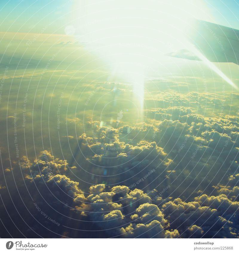 clouds taste metallic Himmel Sonne Wolken ruhig fliegen Tragfläche Fernweh Natur Heimweh Vogelperspektive Wolkendecke Blendeneffekt über den Wolken