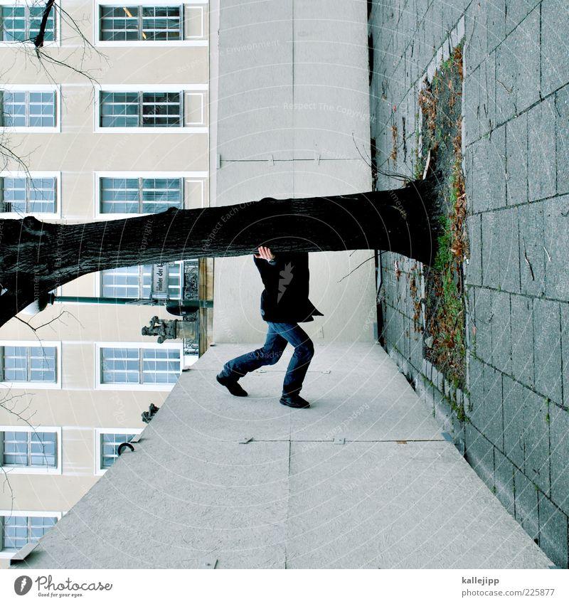 stammhalter Mensch Mann Erwachsene 1 Baum stehen Le Parkour Klettern Stammhalter Baumstamm baumschützer Umweltschutz Bauzaun Fassade Bodenplatten Farbfoto