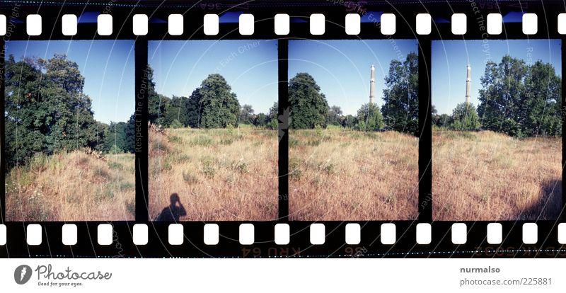 4mal 1ne Brache mit Schornstein Natur Pflanze ruhig Ferne Wiese Umwelt Landschaft Gras Feld Freizeit & Hobby wandern natürlich Wachstum trist Sträucher