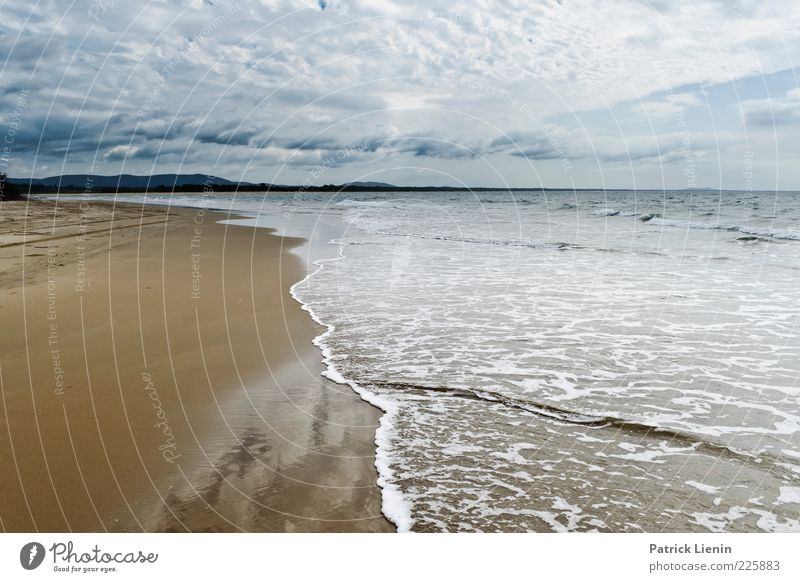 feeling a moment Himmel Natur Wasser Pflanze Sommer Strand Meer Wolken Ferne Erholung Umwelt Landschaft Küste Stimmung Luft Wellen