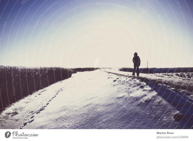 Morgen Wie Heute Mensch Natur Einsamkeit Ferne kalt Schnee Freiheit Gefühle Gras Wege & Pfade Traurigkeit Stimmung Wetter Eis Kraft Angst