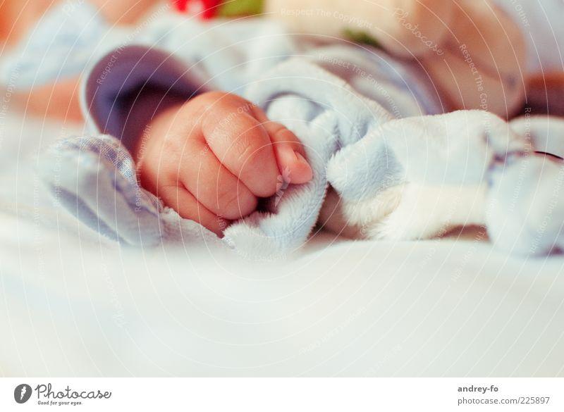 Baby Hand Kind Leben Gefühle Glück klein Kindheit Finger schlafen Warmherzigkeit Idylle Kleinkind Kindererziehung Geburt Kuscheln