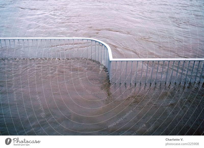 Hochwasser blau Wasser Umwelt Bewegung Metall rosa Zufriedenheit Fluss Geländer Zaun Flüssigkeit Flussufer Dresden silber fließen Wasseroberfläche