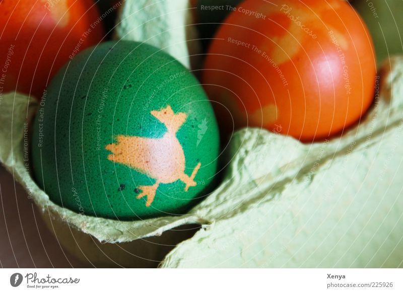 Hennendruck Lebensmittel Ostern grün Osterei Ei mehrfarbig Basteln Farbfoto Detailaufnahme Textfreiraum rechts Tag Figur bemalt Oval Feste & Feiern Eierkarton