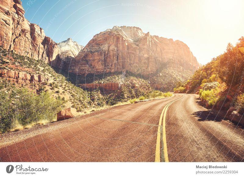 Szenische Straße bei Sonnenuntergang, Zion National Park, USA. schön Ferien & Urlaub & Reisen Ausflug Abenteuer Freiheit Expedition Camping Fahrradtour Sommer