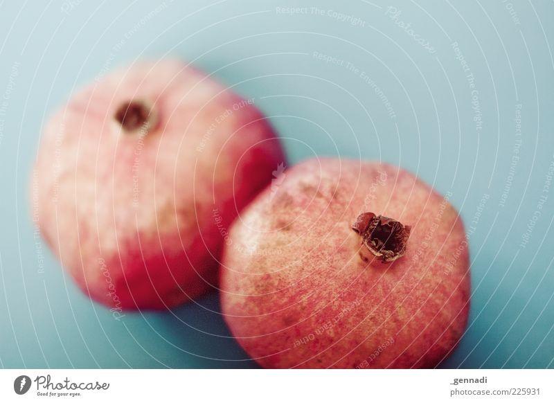 Granatäpfel blau rot Farbe Gesundheit liegen außergewöhnlich Frucht natürlich Lebensmittel frisch Ernährung Gesunde Ernährung lecker Bioprodukte exotisch saftig