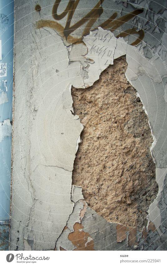 Hausschwein alt Graffiti Wand Mauer lustig Kunst Fassade dreckig authentisch Beton kaputt Vergänglichkeit verfallen Vergangenheit Verfall schäbig
