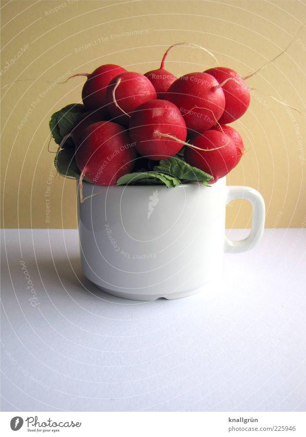 Be veggie! Lebensmittel Gemüse Radieschen Ernährung Bioprodukte Vegetarische Ernährung Diät Tasse frisch Gesundheit lecker rund rot weiß Raphanus sativus Knolle