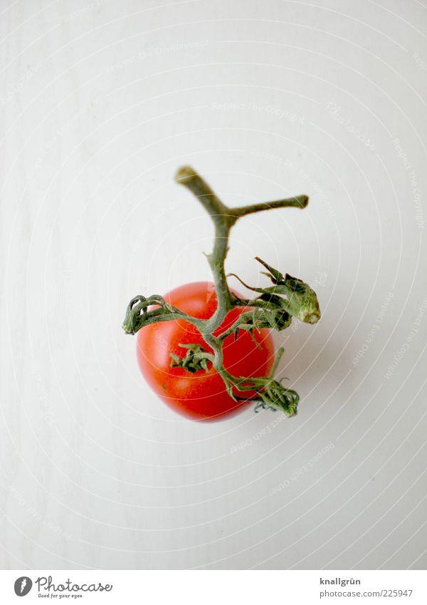 Fast schon Ketchup Lebensmittel Gemüse Tomate Ernährung Bioprodukte Vegetarische Ernährung Diät dehydrieren Gesundheit lecker grün rot weiß Appetit & Hunger