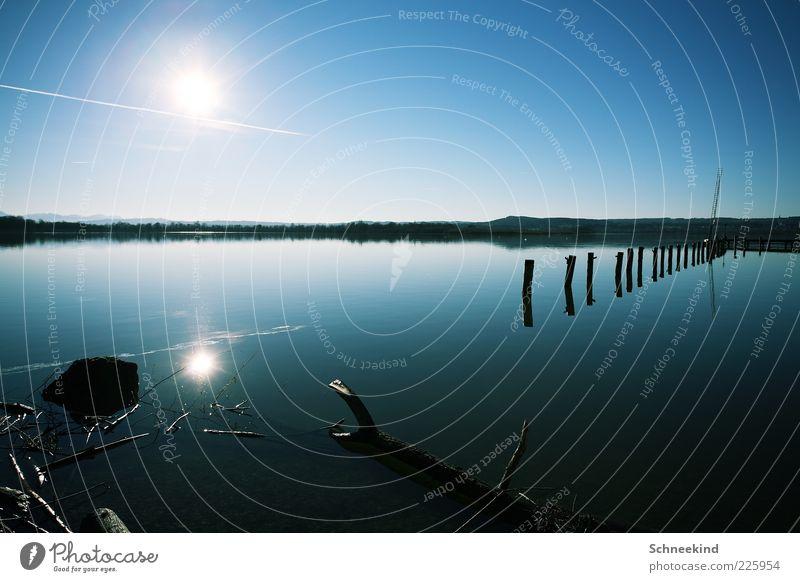 Draussen am See II Umwelt Natur Landschaft Wasser Himmel Wolkenloser Himmel Sonne Sonnenlicht Schönes Wetter Küste Seeufer Baumstamm blau Erholung Farbfoto