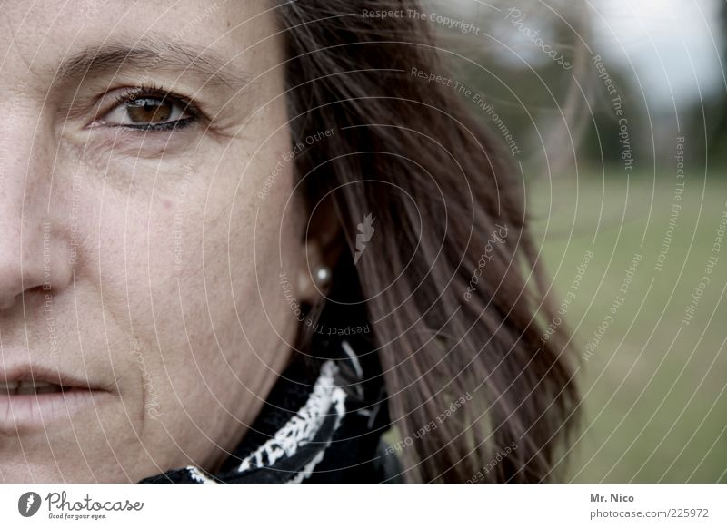 Frau R. Mensch schön ruhig Gesicht Auge Leben feminin Kopf Haare & Frisuren Erwachsene braun Zufriedenheit Haut natürlich beobachten
