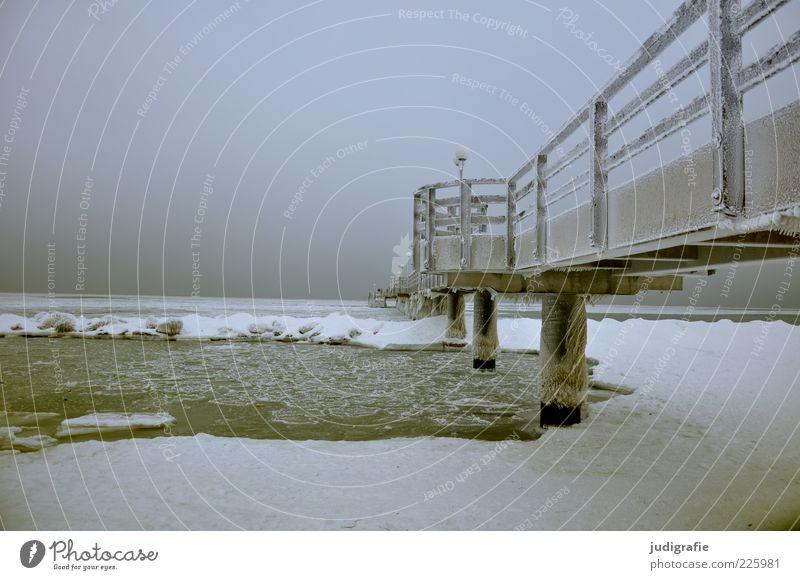 Ostsee Umwelt Natur Landschaft Winter Klima Eis Frost Schnee Küste Strand Meer Wustrow Darß Brücke kalt natürlich Stimmung Tourismus Seebrücke Farbfoto