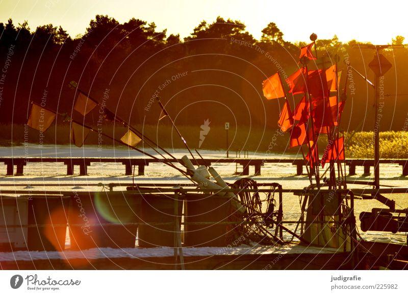 Hafen Umwelt Natur Landschaft Sonnenlicht Winter Schönes Wetter Eis Frost Schnee Küste Seeufer Ostsee Darß Prerow Fischerboot kalt Wärme rot Stimmung Fahne Boje