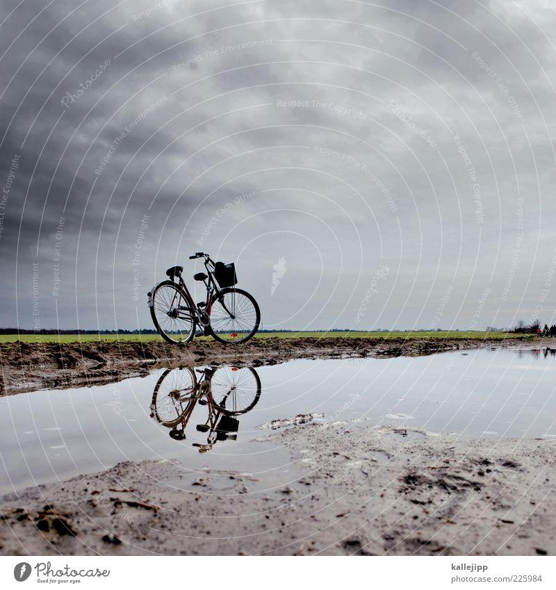 saisonauftakt Himmel Natur Wasser Pflanze Winter Ferne Umwelt Landschaft Wiese Freiheit Sand Regen Erde Wetter Fahrrad Feld