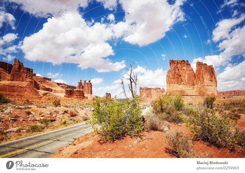 Szenische Ansicht des Arches National Park Himmel Natur Ferien & Urlaub & Reisen Sommer schön Landschaft Reisefotografie Umwelt Wege & Pfade Tourismus Freiheit