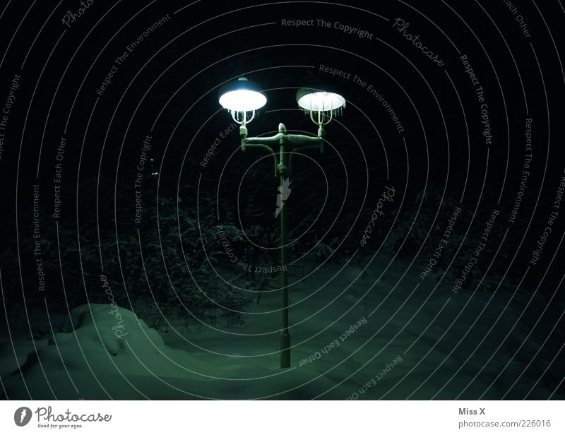 Lampe Winter kalt dunkel Schnee Park hell Eis Beleuchtung Sträucher Frost leuchten Straßenbeleuchtung Eiszapfen Nacht