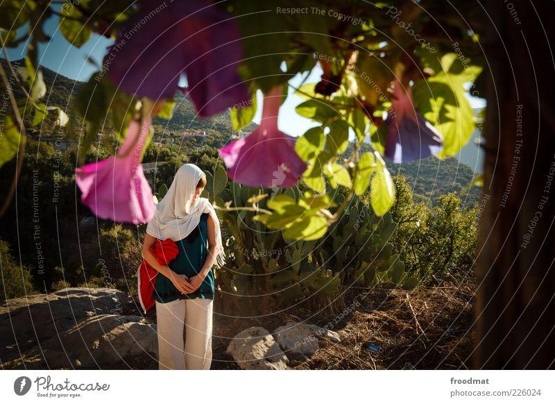 bluemen Frau Mensch Natur Jugendliche Pflanze Blume Ferien & Urlaub & Reisen ruhig Ferne feminin Umwelt Blüte träumen Erwachsene Ausflug Tourismus