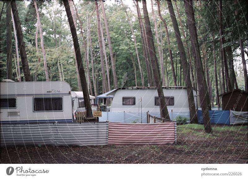 Ausfahrt freihalten! Lifestyle Wohlgefühl Erholung ruhig Freizeit & Hobby Ferien & Urlaub & Reisen Ausflug Camping Sommerurlaub Häusliches Leben Umwelt Natur
