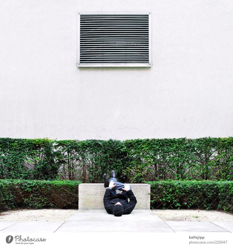 museumsbesucher Mensch maskulin Mann Erwachsene 1 Pflanze Tier Sträucher Grünpflanze Park Haus Mauer Wand Fenster Hose Mantel Schuhe Mütze beobachten Blick