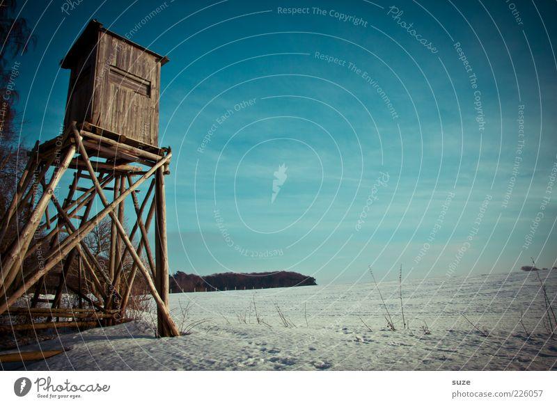 Hochstand Himmel Natur blau Winter Einsamkeit Ferne kalt Schnee Landschaft Holz Feld Freizeit & Hobby warten beobachten Jagd verstecken