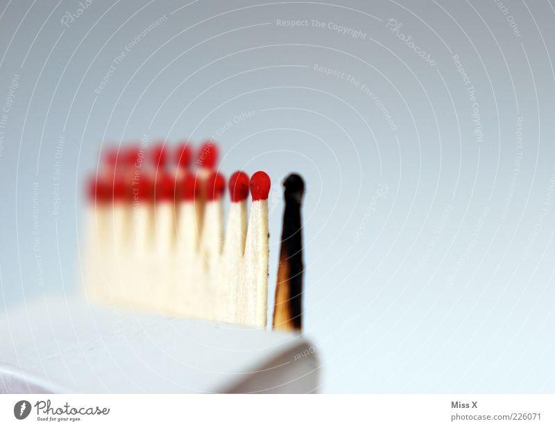 schwarzer Zündholzpeter rot schwarz Holz Feuer brennen Flamme Verschiedenheit Streichholz Außenseiter anzünden verbrannt Makroaufnahme zündeln Schwarzes Schaf