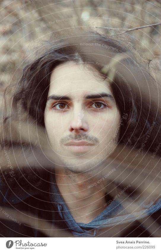 es ist was es ist. maskulin Junger Mann Jugendliche 1 Mensch 18-30 Jahre Erwachsene Natur Pflanze Sträucher Ast Pullover Haare & Frisuren brünett langhaarig