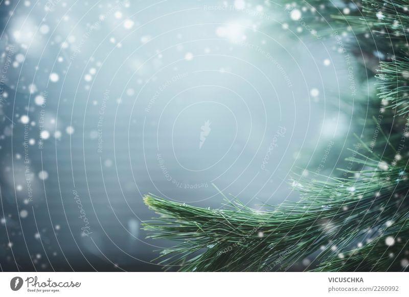 Winter Natur Hintergrund mit Tannenzweige Lifestyle Design Ferien & Urlaub & Reisen Weihnachten & Advent Landschaft Schönes Wetter Schnee Pflanze