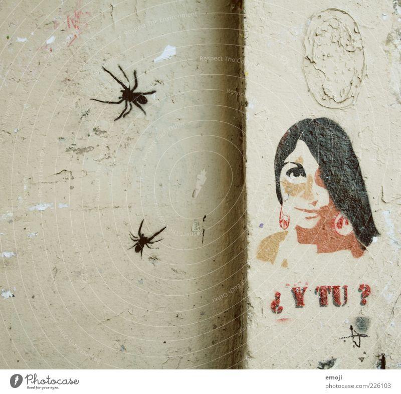 Spinnen feminin Junge Frau Jugendliche 1 Mensch 18-30 Jahre Erwachsene Mauer Wand Fassade alt Graffiti Französisch Comic Fragezeichen Farbfoto